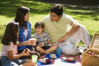 Hispanic Family at Picnic